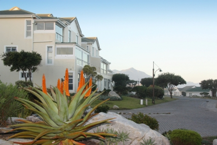 Cape Town Holiday Rental - The Potting Shed - Self Catering