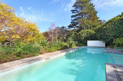 Cape Town Holiday Rentals - Constantia Sunbird