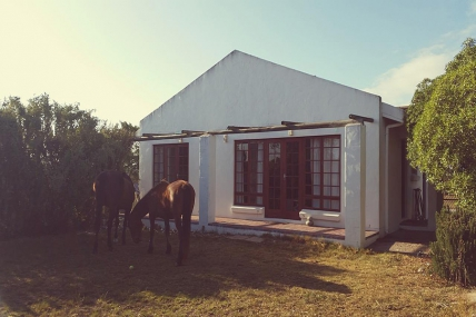Cape Town Holiday Rentals - Queenies Cottage