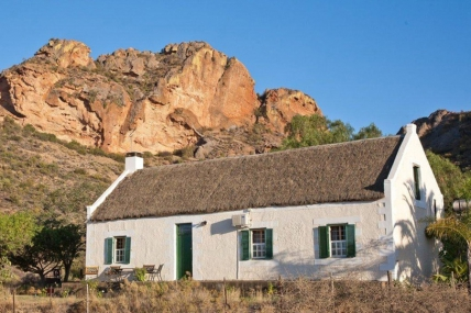 Cape Town Self Catering Accommodation - Birds Nest