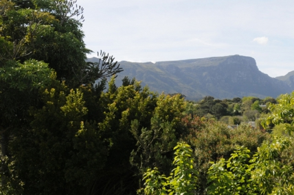 Cape Town Self Catering Accommodation - SP - Mountain Terrace Suite