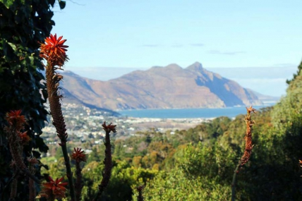 Cape Town Self Catering Accommodation - Ruytenplaats