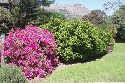 Cape Town Holiday Rentals - Boulder Cottage
