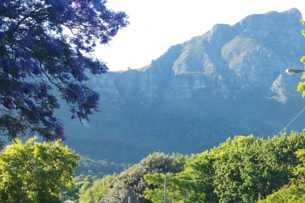 Cape Town Holiday Rental - Bishopscourt Villa