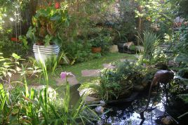 Holiday Apartments - Jambo Guest House