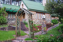 Hout Bay Accommodation - HKP - Yellow Wood