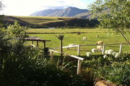 Swellendam Accommodation - Arumvale - Rustic Cottage