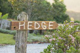 Knysna Self Catering - Hedge