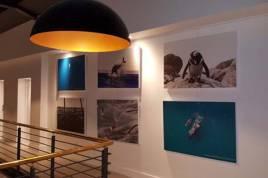 Hermanus Self Catering - The Gallery Studios