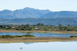 Garden Route Accommodation - Tree Top Cottage