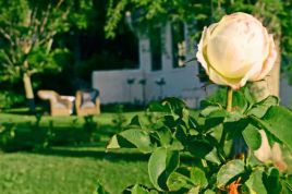 Somerset West Self Catering - Wine Farm Cottage