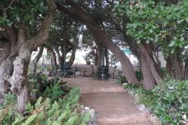 Holiday Apartments - Milkwood Cottage