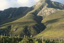 Overberg Accommodation - Misty Mountains