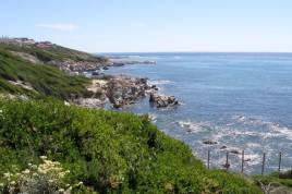 Holiday Apartments - The Lookout at Whale Cove